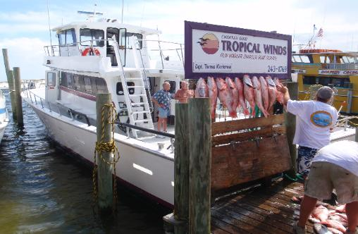 Charterboats partyboats for Sweet jody fishing